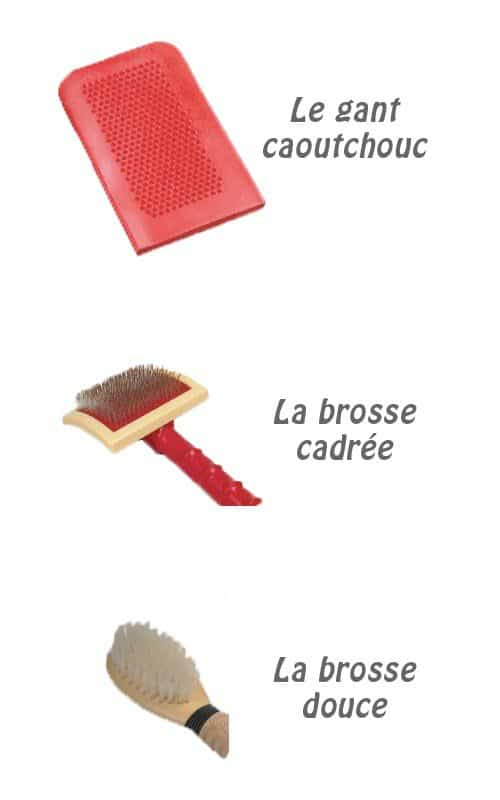 exemples-brosses