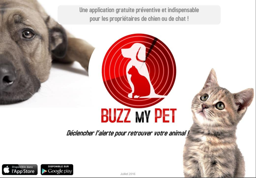 Buzz my pet